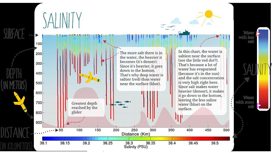 Salinity information